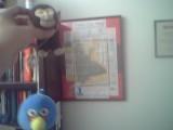 http://www.toyvoyagers.mamawidow.com/upload/2011/09/29/20110929105138-56495942.jpg