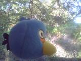 http://www.toyvoyagers.mamawidow.com/upload/2011/10/03/20111003154349-f70f759d.jpg